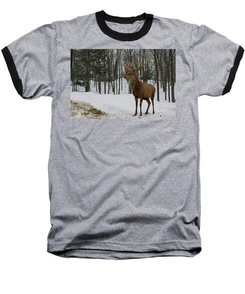Of Course Baseball T-Shirt