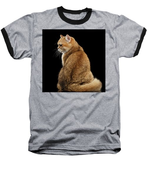 offended British cat Golden color Baseball T-Shirt