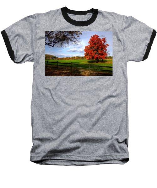 Oh Beautiful Tree Baseball T-Shirt