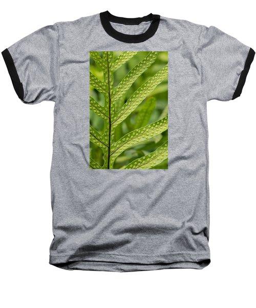 Oh Fern Baseball T-Shirt