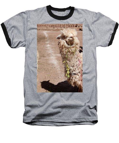 Oh Hi Baseball T-Shirt