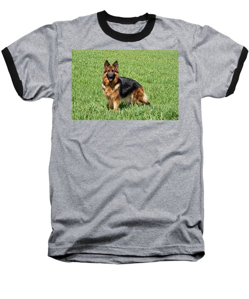 Ohana In Field Baseball T-Shirt