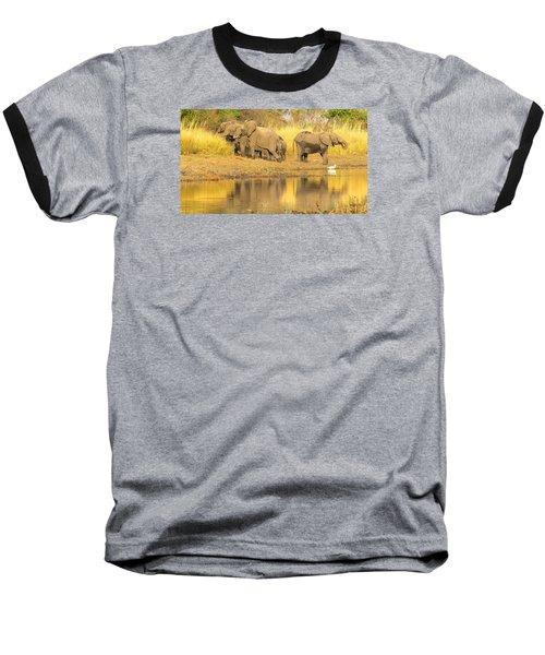 Okavango Scramble Baseball T-Shirt
