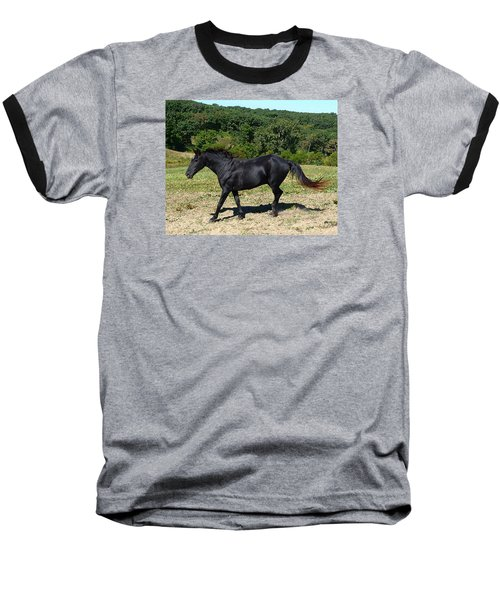 Old Black Horse Running Baseball T-Shirt by Jana Russon