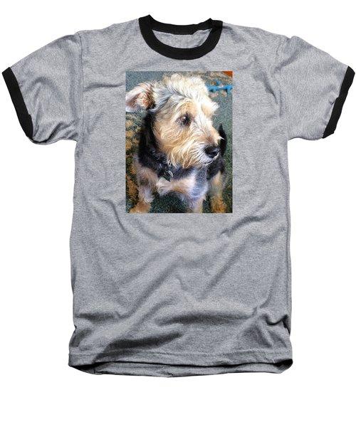 Old Dogs Rock Baseball T-Shirt