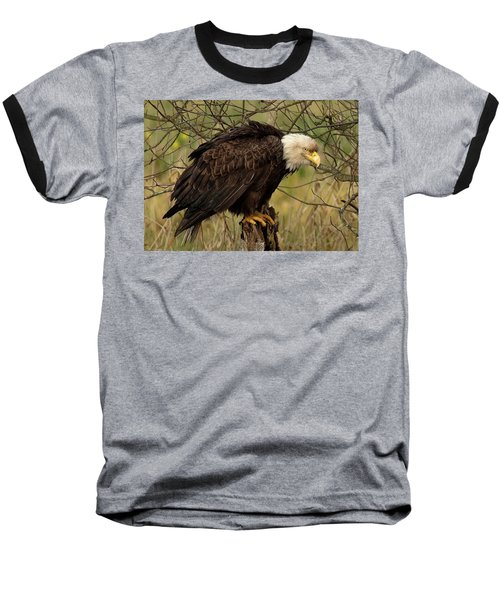 Old Eagle Baseball T-Shirt