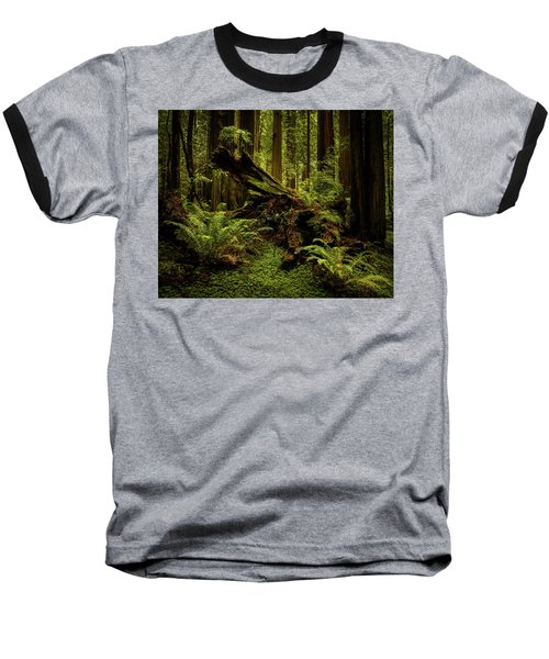 Old Growth Forest Baseball T-Shirt