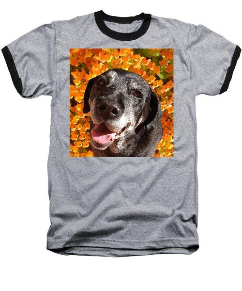 Old Labrador Baseball T-Shirt