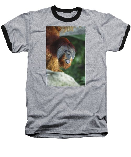 Old Man Of The Forest Baseball T-Shirt by Greg Slocum