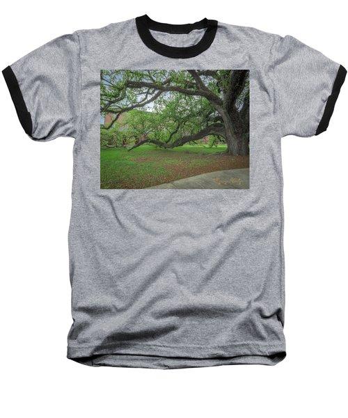 Old Oak Tree Baseball T-Shirt by Gregory Daley  PPSA