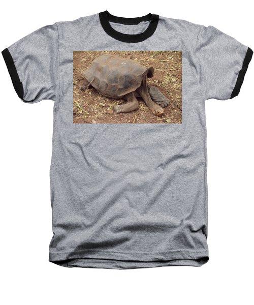 Old Tortoise Baseball T-Shirt