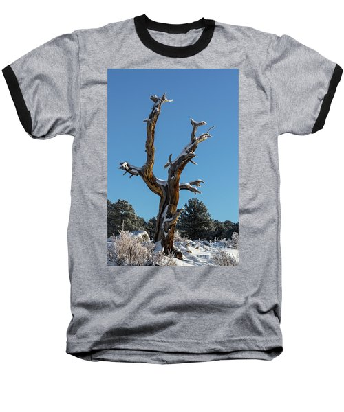 Old Tree - 9167 Baseball T-Shirt