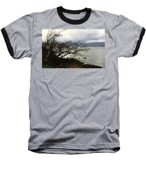 Old Tree By The Bay Baseball T-Shirt by Chriss Pagani