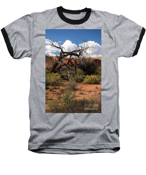 Old Tree In Capital Reef National Park Baseball T-Shirt