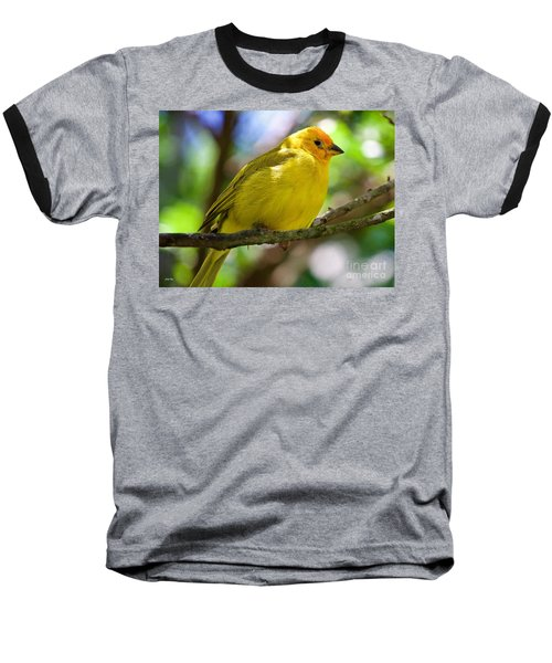 Ole Yellow Baseball T-Shirt by Judy Kay