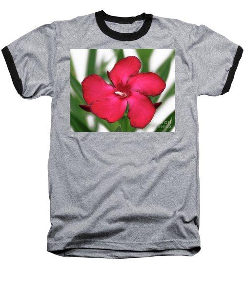 Oleander Blood-red Velvet 1 Baseball T-Shirt