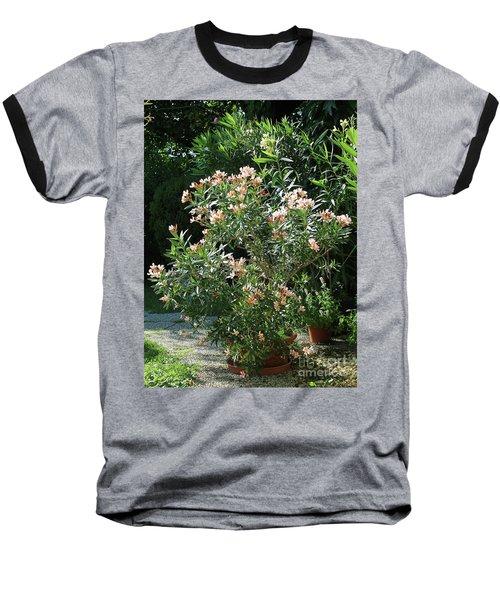 Oleander Petite Salmon 4 Baseball T-Shirt by Wilhelm Hufnagl