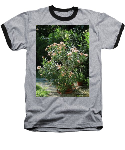 Oleander Petite Salmon 4 Baseball T-Shirt
