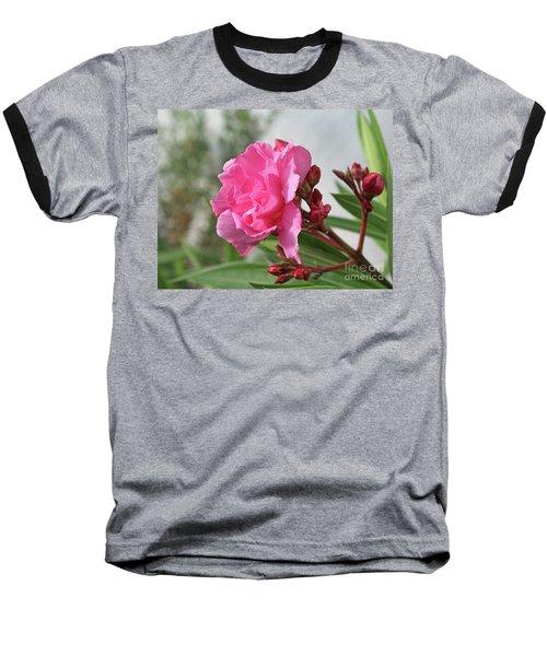 Oleander Splendens Giganteum 4 Baseball T-Shirt