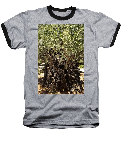 Baseball T-Shirt featuring the photograph Olive Tree by Mae Wertz