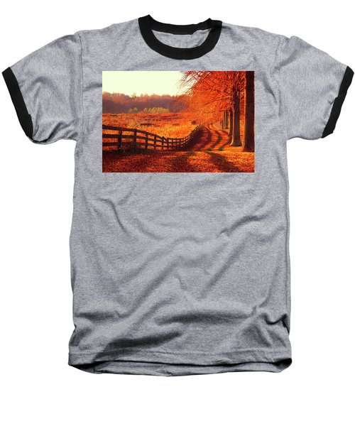 On A Day Like Today Baseball T-Shirt by Iryna Goodall