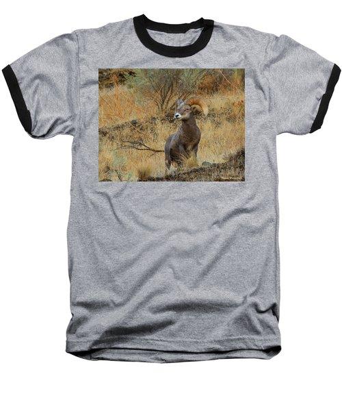 On Guard Baseball T-Shirt