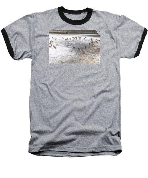 On Ice  Baseball T-Shirt by Leif Sohlman