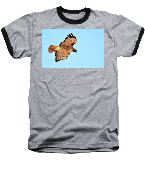 Baseball T-Shirt featuring the photograph On The Hunt by AJ Schibig