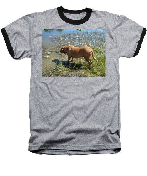 On The Hunt Baseball T-Shirt by Val Oconnor