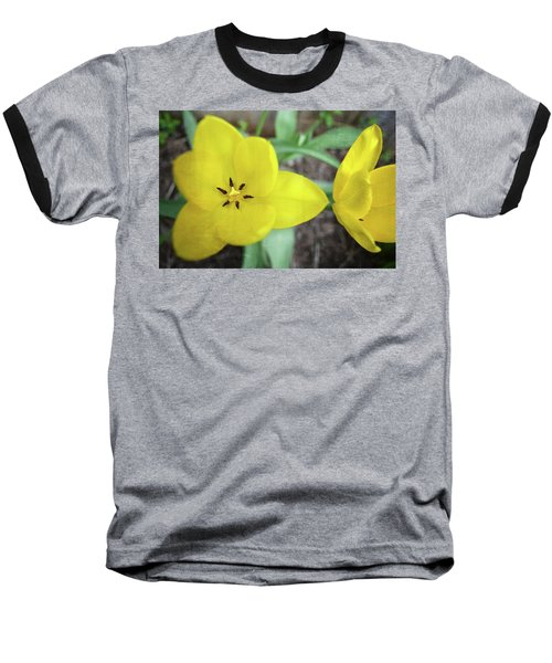 One And A Half Yellow Tulips Baseball T-Shirt by Michelle Calkins