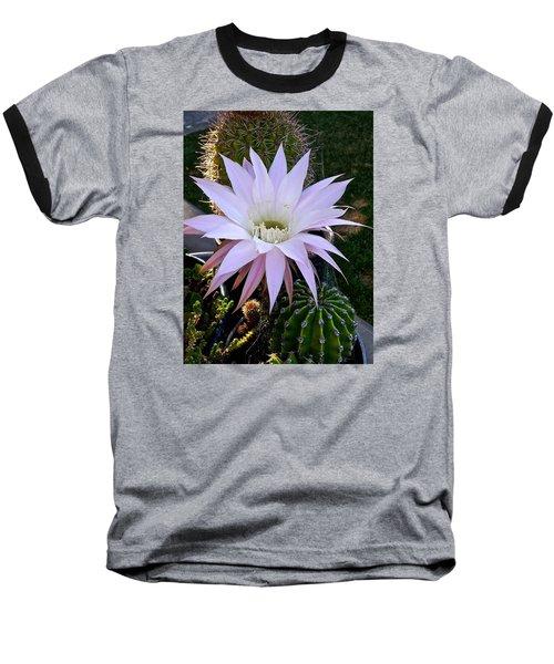 One Day Wonder Baseball T-Shirt by Amelia Racca