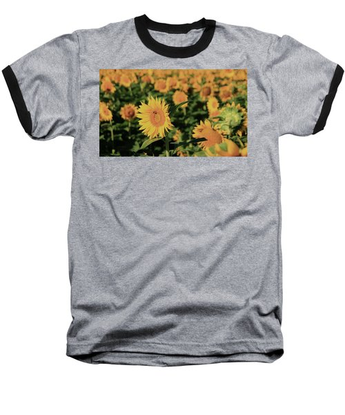 Baseball T-Shirt featuring the photograph One In A Million Sunflowers by Chris Berry