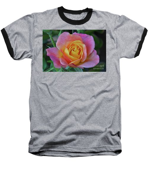 One Of Several Roses Baseball T-Shirt by Debby Pueschel