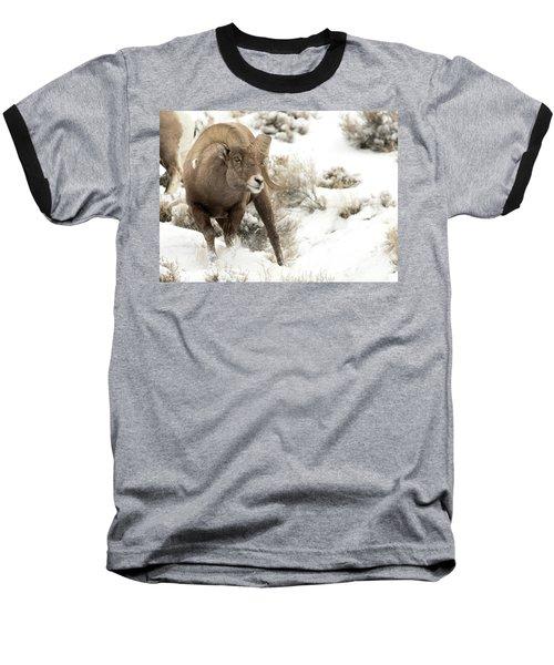 One Tough Guy Baseball T-Shirt