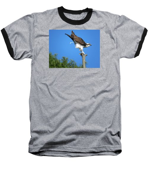 Baseball T-Shirt featuring the photograph Oops by Phyllis Beiser