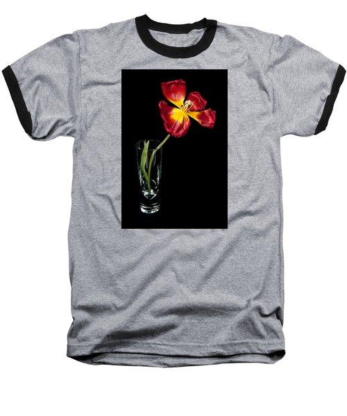 Open Red Tulip In Vase Baseball T-Shirt by Helen Northcott