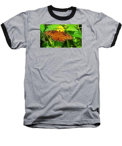 Open Wings Baseball T-Shirt by Judy Wanamaker