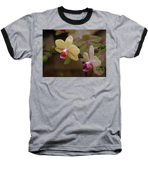 Opulent Orchids Baseball T-Shirt
