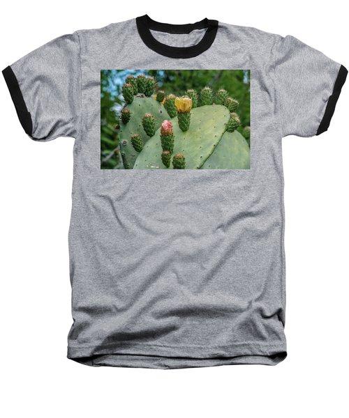 Opuntia Cactus Baseball T-Shirt by Patrick Boening