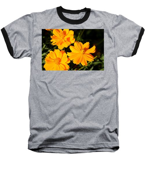 Baseball T-Shirt featuring the photograph Cosmos Trio by Sheila Brown