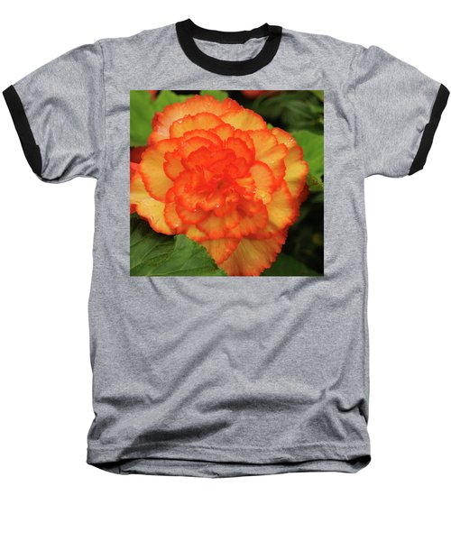 Orange Begonia Baseball T-Shirt