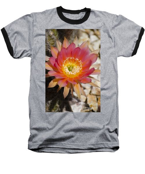 Orange Cactus Flower Baseball T-Shirt