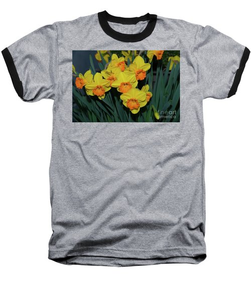 Orange-centered Daffodils Baseball T-Shirt