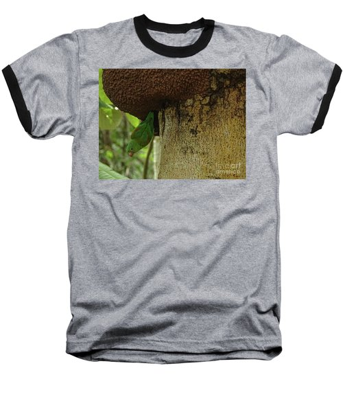 Orange -chinned Parakeet  On A Termite Mound Baseball T-Shirt