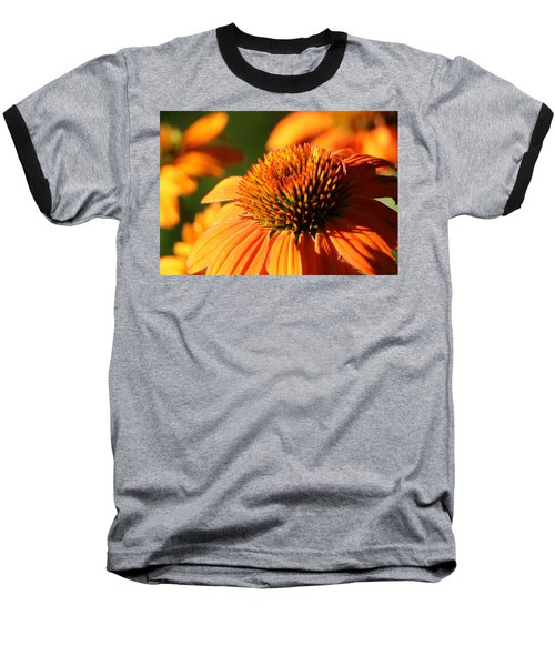 Orange Coneflower At First Light Baseball T-Shirt