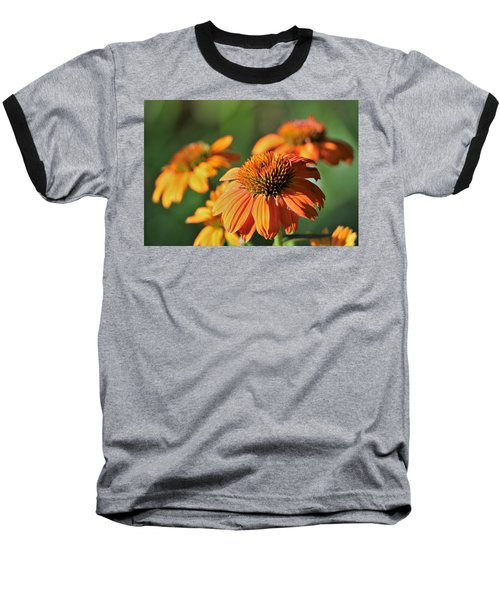 Orange Cone Flowers In Morning Light Baseball T-Shirt