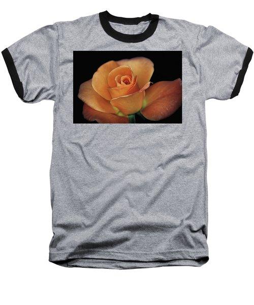 Orange Cream Baseball T-Shirt by Elaine Malott