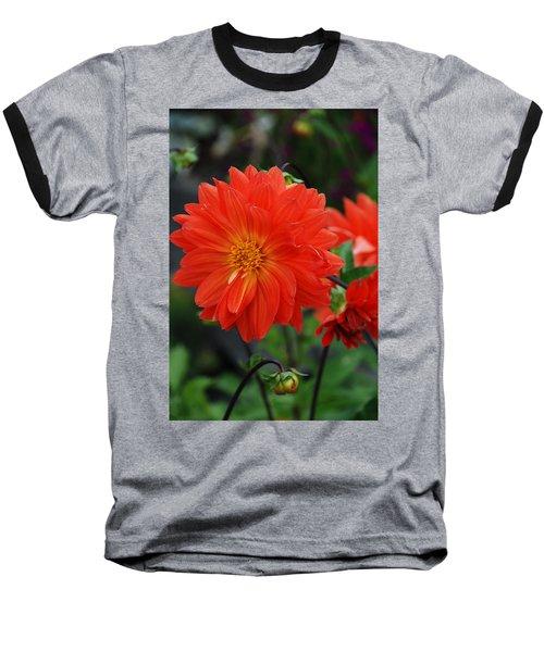 Orange Dahlia Baseball T-Shirt