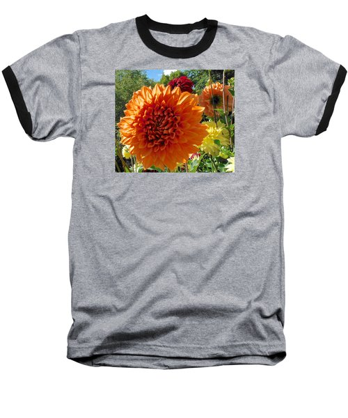 Orange Dahlia Suncrush  Baseball T-Shirt