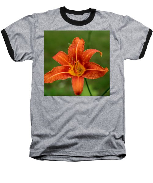 Orange Day Lily No.2 Baseball T-Shirt